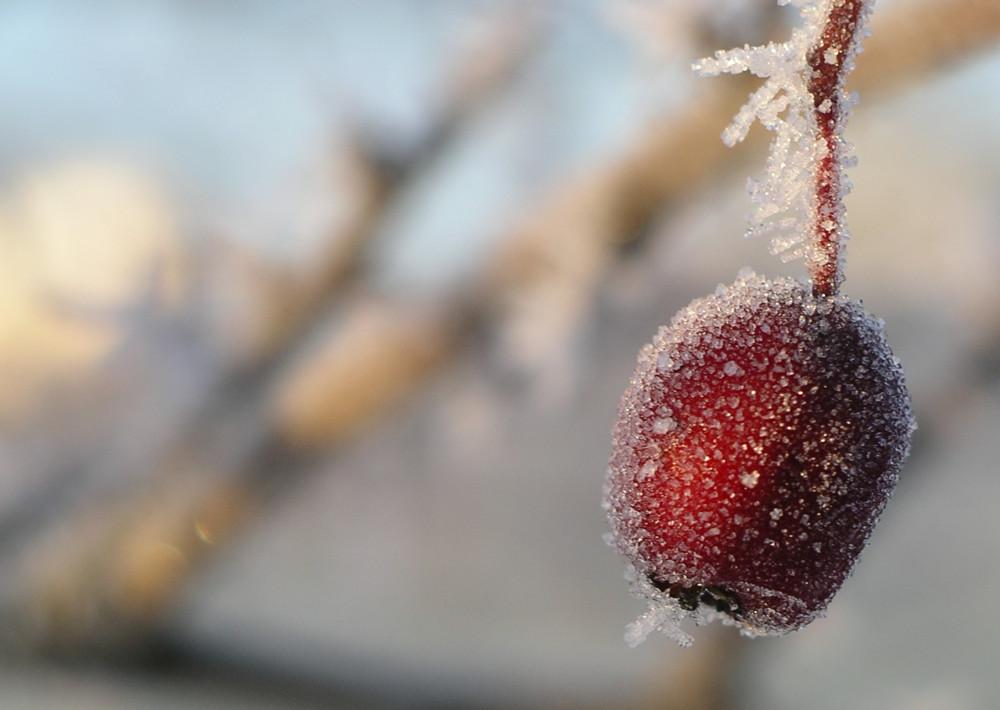 So schön kann Winter sein! I