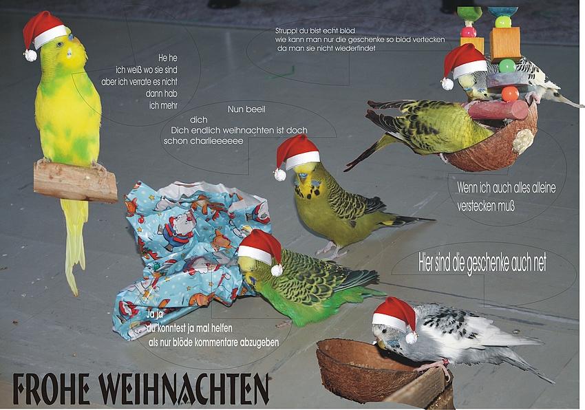 so sind die vorbereitung zum weihnachtsfest bei meine wellis -