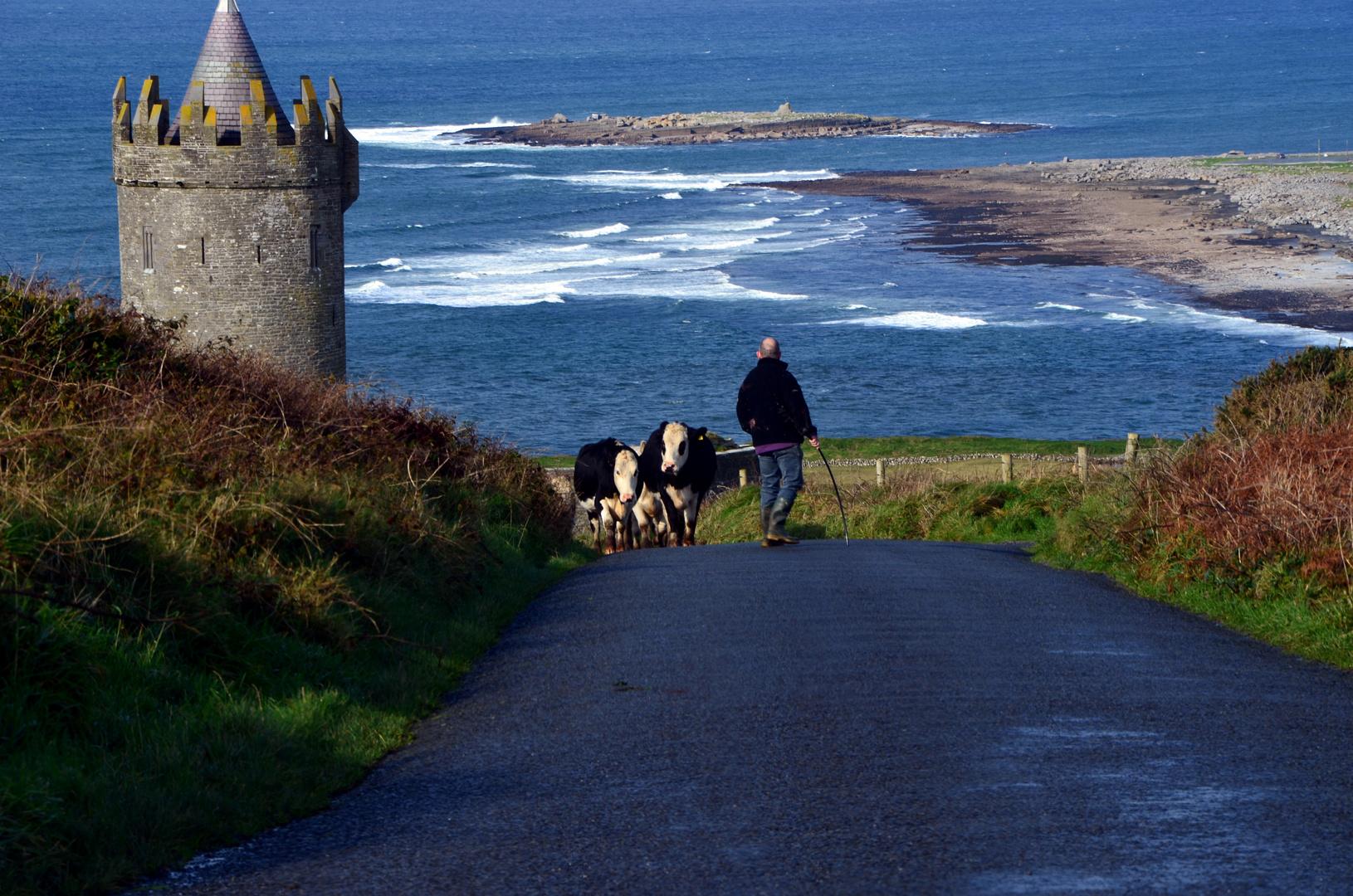 so stellt man sich Irland vor!