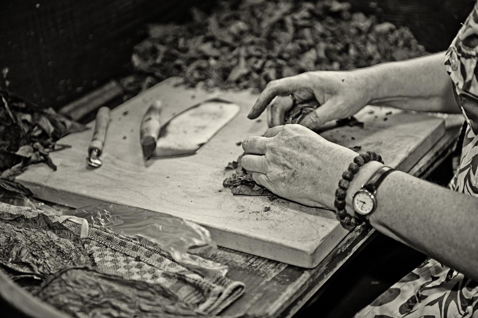So werden Zigarren gedreht ....