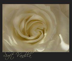 Soft Vanilla