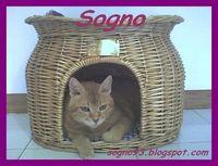 SOGNO93
