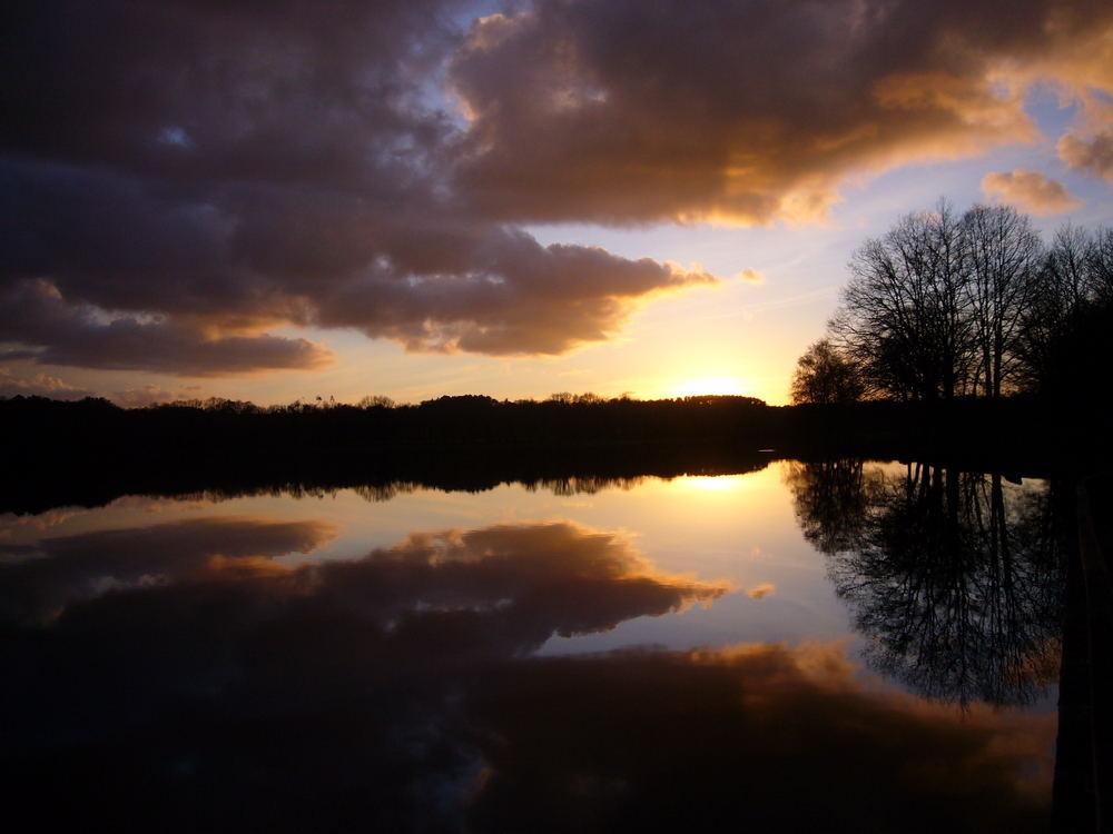 soir sur l'étang