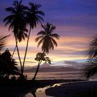 Sol de Costa Rica 1