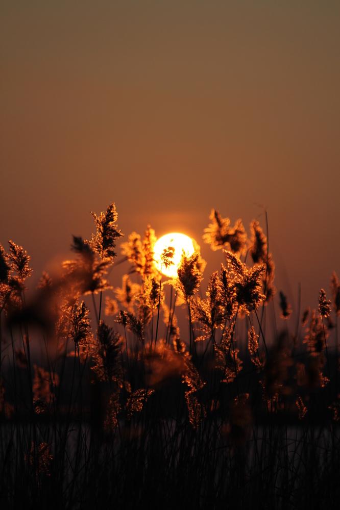 solar heat in winter