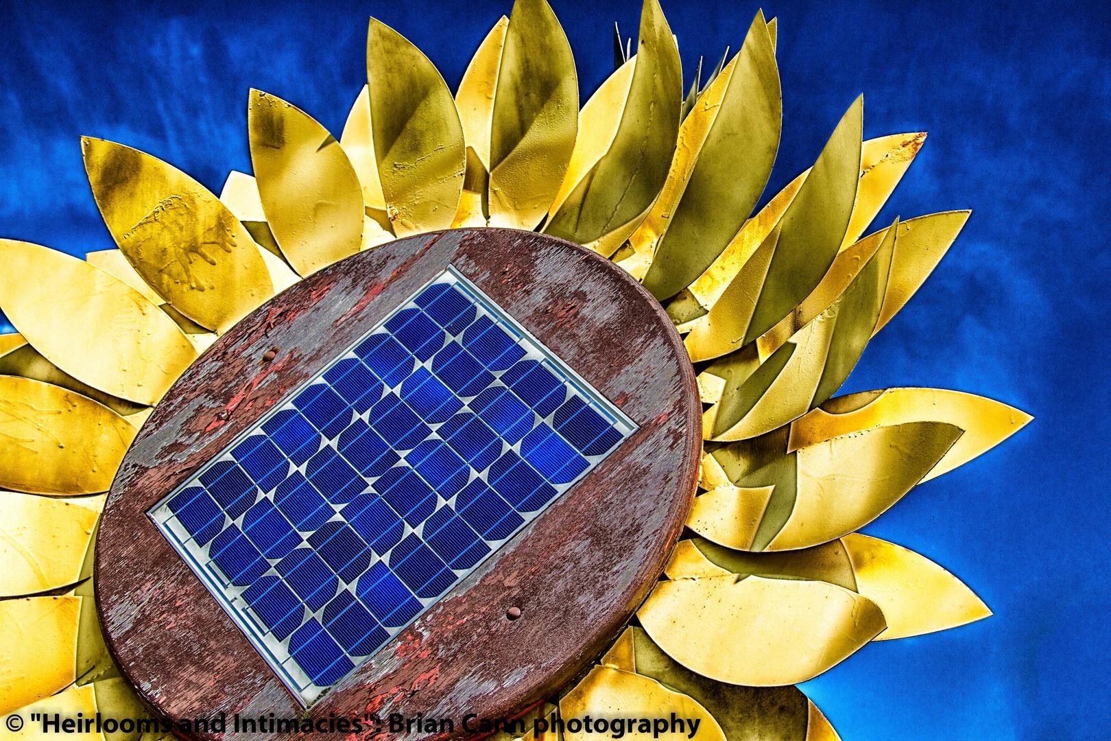 Solar Sunflower