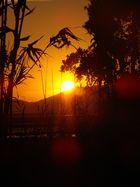 soleil couchant sur la presqu'île de Hyéres