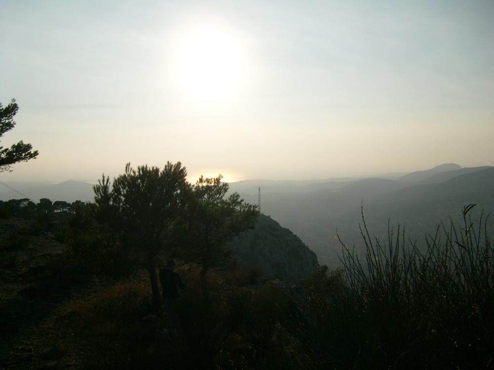 Soleil de Printemps dans le Var