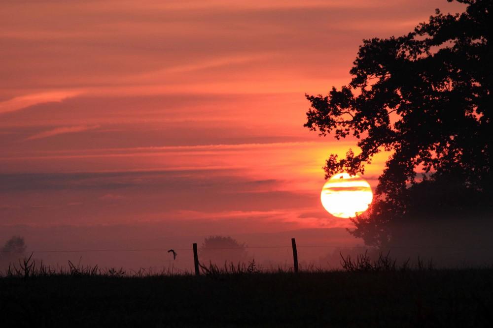 Soleil lève