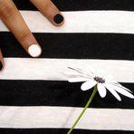 Sol,,Flor y rayas...