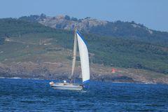 Solitario, islas Cíes