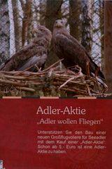Sollen Adler dem Diät-Trend folgen?
