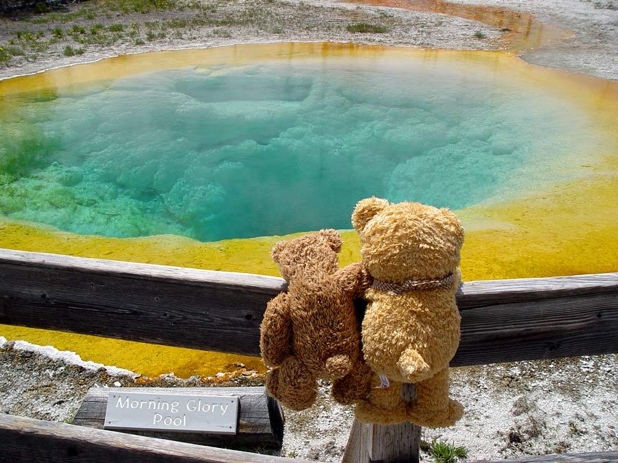 Sollen wir da wirklich baden?