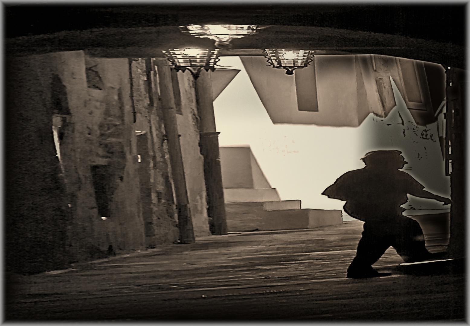 Sombra en Fuga