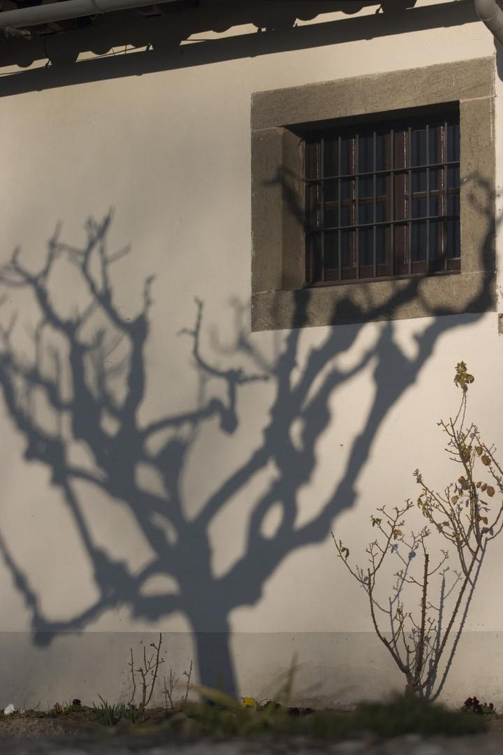 Sombras en Cantonigròs