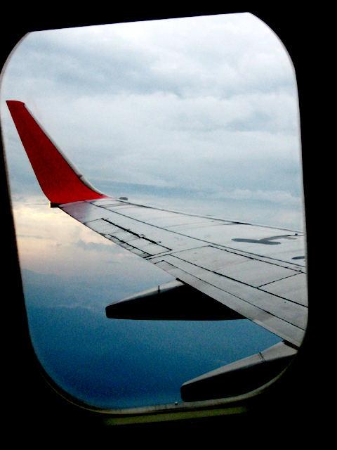 someday i fly away