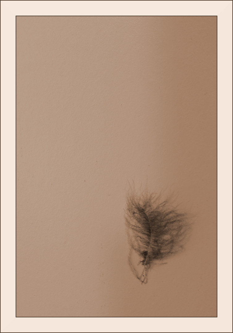 Sometimes I feel like a feather in the air ...
