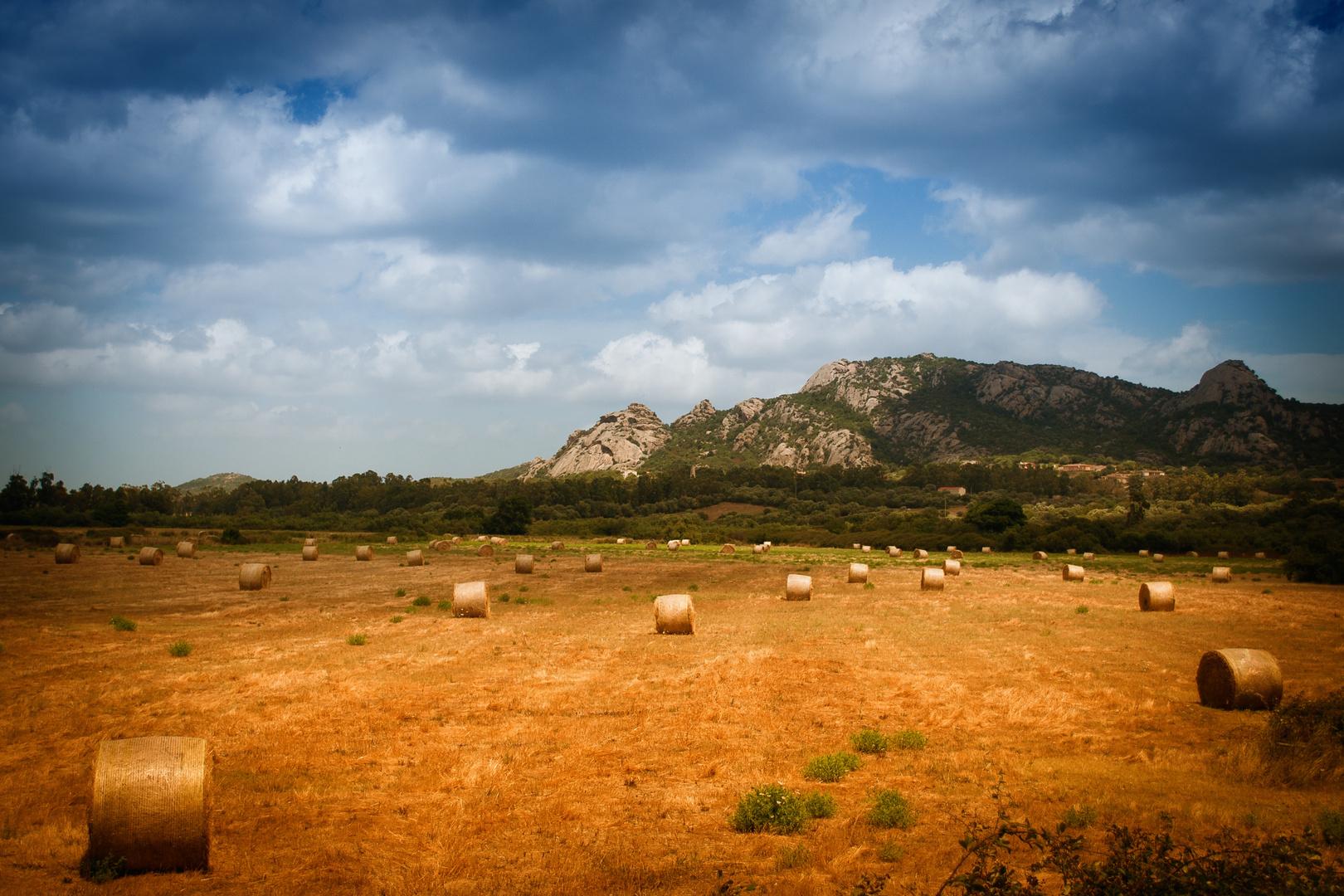 Somewhere in Sardinia