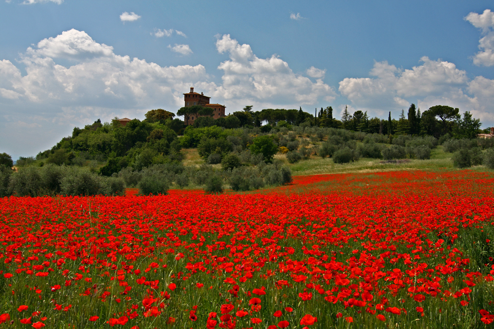 somewhere in toscany