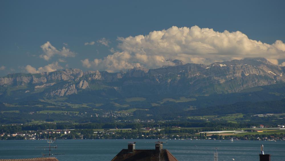 Sommer am Bodensee