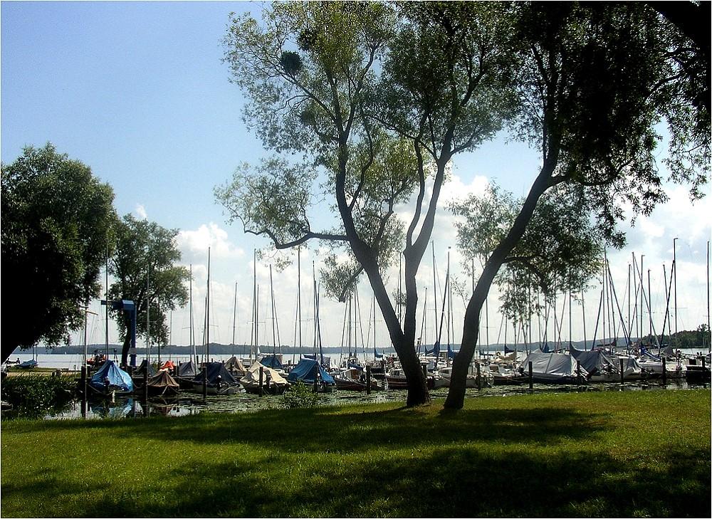 Sommer am Schweriner See
