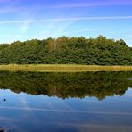 - Sommer am See -