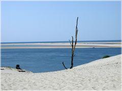 Sommer an der Dune de Pyla