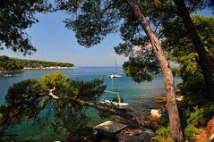 Sommer auf der Insel Brac