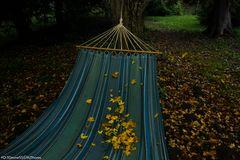 Sommer geht - Herbst macht sich breit I