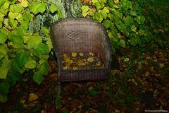 Sommer geht - Herbst macht sich breit II