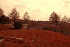 Sommer - Herbst