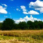 Sommer Landschaften
