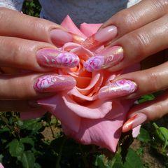 Sommer Rosenzeit