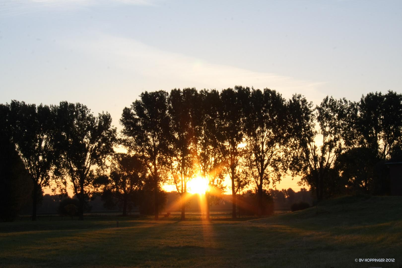 Sommer, Sonne, Sonnenschein zieh´ich mir Furchtbar gerne rein!