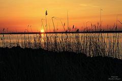 Sommer-Sonnenuntergang im April 2018