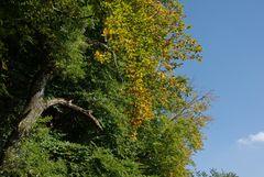 Sommer und Herbst