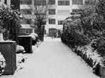 Sommer wie Winter .....