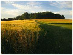 Sommerabend in Oberfranken