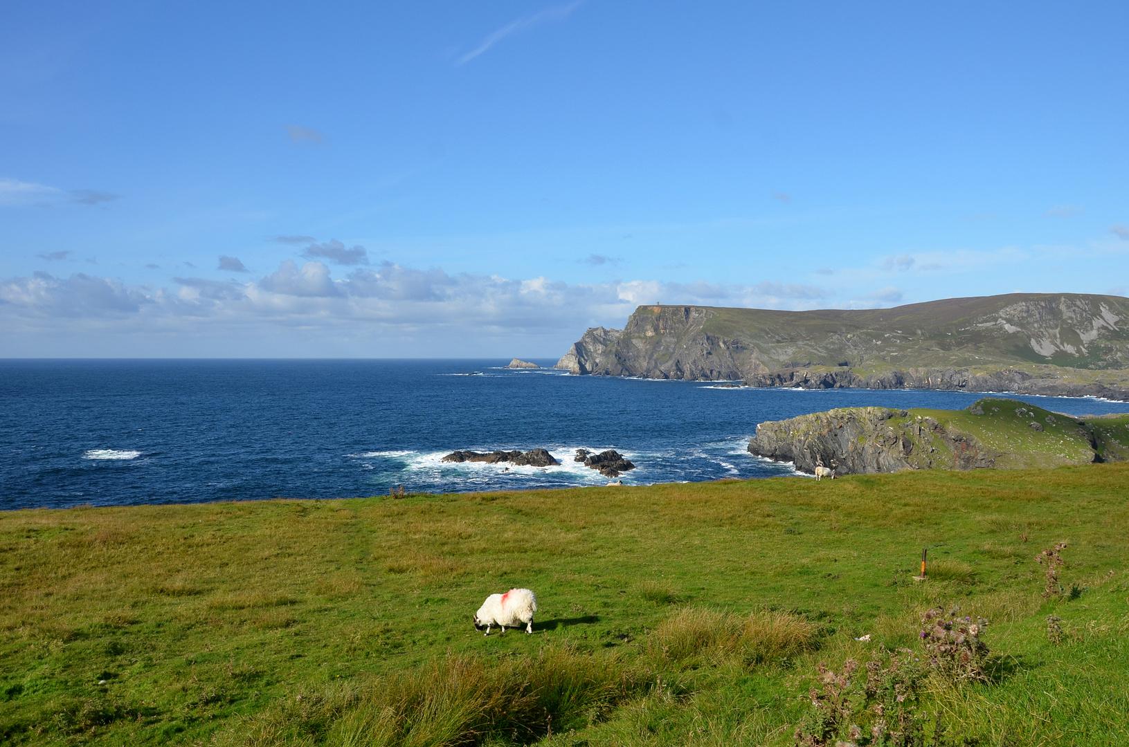 Sommerabendstimmung in County Donegal - Ireland