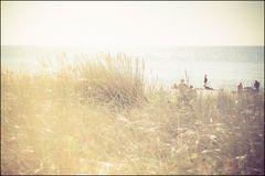 SommerBlende 1.8 (II)