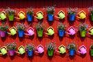 Sommerblumen von Madicken