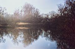 Sommerdamm II - der Blick ins Groschenwasser