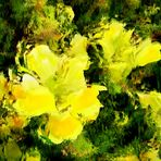 Sommerfeeling Gelb