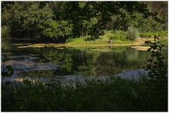 Sommeridylle - oder: der Libellenfotograf...