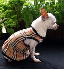 Sommerkleid in Burberry stil