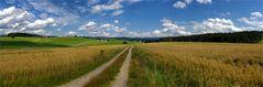 Sommerlandschaft - Bayerischer Wald