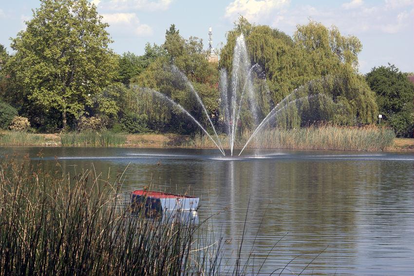 Sommerliche Idylle am Speyerer Russenweiher