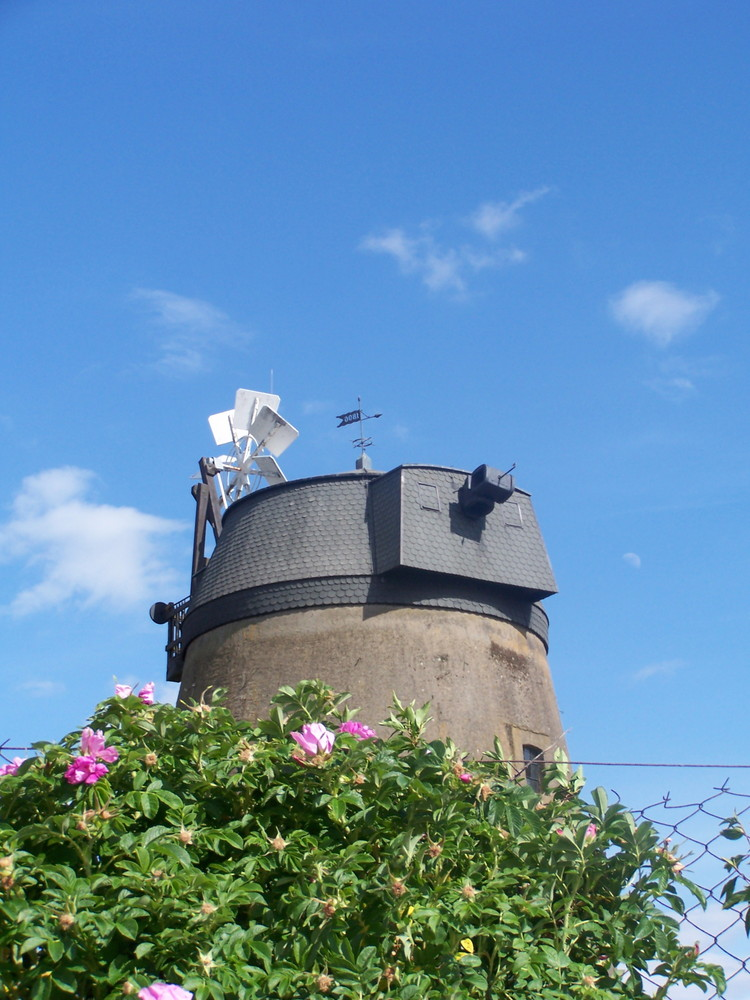 Sommermühle