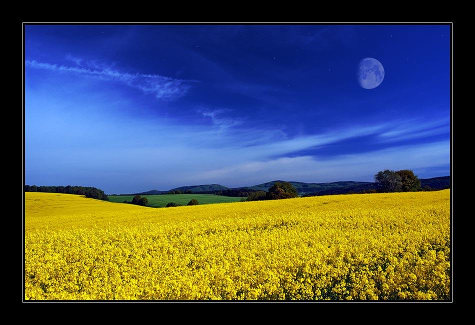 Sommernachtstraum [mit Mond & Sternen]