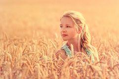 Sommerportrait im Weizenfeld